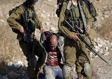 """""""الحيوانات البشرية"""" في الصحافة العبرية"""